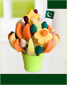 Pakistan Daisy